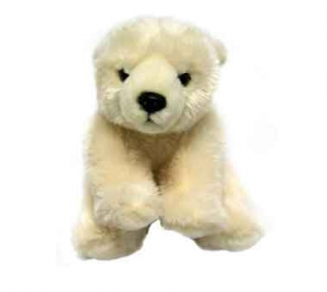 Polar Teddy