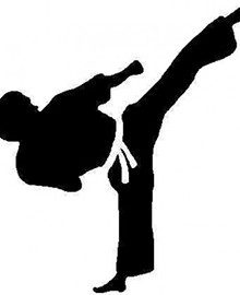 Eight Reasons Your Kids Should Learn Martial Arts