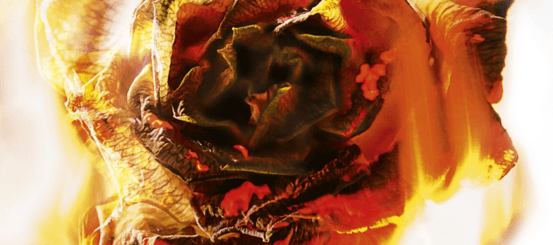 Extract reveal: Fireblood by Elly Blake