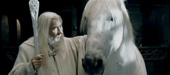 Our favourite fantasies would be nothing without their animals